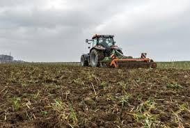 zahlungsansprüche landwirtschaft direktzahlungen übertragene zahlungsansprüche jetzt melden