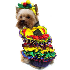 Yorkie Costumes Halloween 228 Pet Costumes Images Animals Pet Costumes