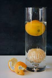 orange buoyancy science experiment playdough to plato