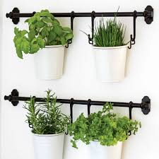 Wall Mounted Planters kitchens hanging planters with black wall mounted rods have a
