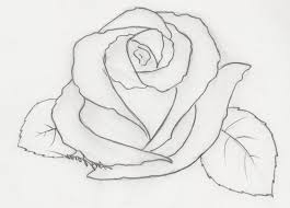 3d pics with pencil of heart and roses drawing of sketch