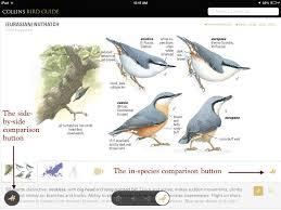 review the collins bird guide app u2013 prairie birder