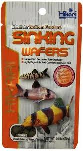 hikari sinking wafers review hikari tropical micro wafers fish food 70 oz gotpetsupplies com