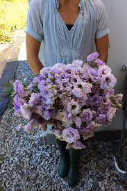 When Is Lavender In Season In Michigan by Five Tricks To Growing Fantastic Field Lisianthus Love U0027n Fresh