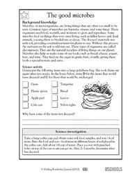 decomposition worksheet free worksheets library download and