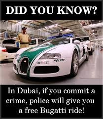 Bugatti Meme - 62 best did you know images on pinterest did you know