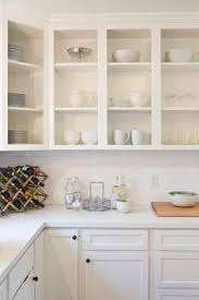 I Love This My Latest Idea Is To Use Chalk Paint Colored Like - Kitchen cabinet without doors