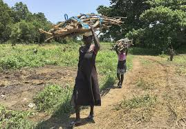 Al S Firewood North Bay by War Torn South Sudan At Grave Risk On Climate Change Sfgate