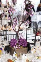 manzanita centerpieces lowered price for sale manzanita tree centerpieces must go now