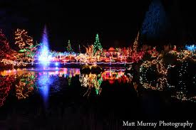 Vandusen Botanical Garden Lights Vandusen Botanical Gardens Festival Of Lights Matt Murray