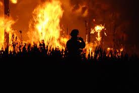 Alaska Wildfire Climate Change by Alaska U0027s Explosive Wildfire Season Is Fueling And Feeding On