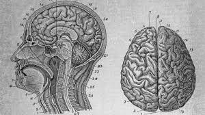 bbc radio 4 the infinite monkey cage series 16 the mind v the