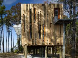 loblolly house prefabricated architecture integrated with nature