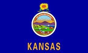 salina ks sunflower field by kansas state university kansas state information symbols capital constitution flags