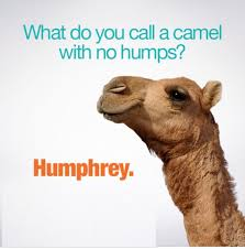 Hump Day Meme - wednesday hump day meme 09 wishmeme