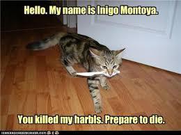 My Name Is Inigo Montoya Meme - hello my name is inigo montoya i can has cheezburger