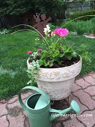Container Water Gardens No Fail Flower Container Gardens For Beginners Life Redesign 101