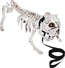 Skeleton Bones For Halloween by Halloween Prop Decoration Skeleton Dog Amazon Com Industrial