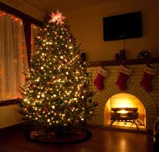 where to buy christmas tree lights how many christmas lights for my tree christmas lighting supply blog