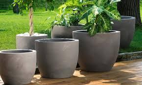 vasi da interno arredo giardino garden vicenza verde