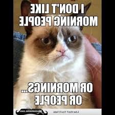 Good Morning Cat Meme - nyan charming good morning cat meme photograph