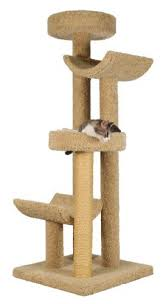 lovable cat condos the best cat tree and its benefits cat overdose