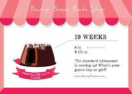 week by week bump boxes bump boxes pregnancy subscription