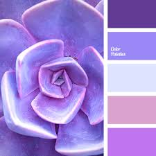Shades Of Purple Color Combination Cool Shades Of Violet Lilac Pink Pink And