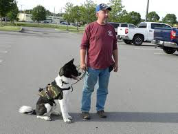 topsham program pairs service dogs service veterans u2013 the forecaster