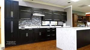 Raised Panel Espresso Maple Kitchen Cabinets For Less - Espresso kitchen cabinets
