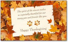 thanksgiving laser cards smartpractice veterinary