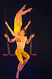 emerald city trapeze halloween 90 best trapeze images on pinterest aerial arts aerial