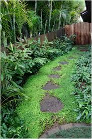 backyards cool grassless backyard landscaping ideas create your
