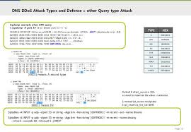 Anonymous Dns Amplification Attacks For by Dns Ddos Attack And Risk