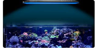 Led Aquarium Lighting Kessil Led Lights