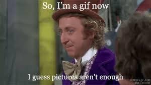 Charlie Chocolate Meme - charlie and the chocolate factory gifs wifflegif