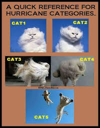 Meme Categories - so this is why hurricane categories go by cat a hurricane