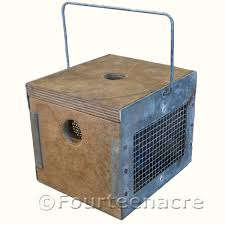 auto box wood vintage trapsvintage traps