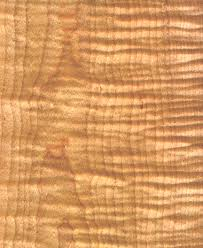 Curly Maple I Want To Use And Make Kitchen Cabinets HOME AND - Kitchen cabinet wood types