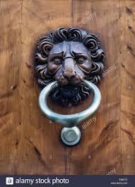 decorative door knockers decorative lion door knocker florence italy stock photo 72098430