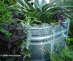 Galvanized Trough Planter by Best 25 Cattle Water Trough Ideas On Pinterest Horse Trough