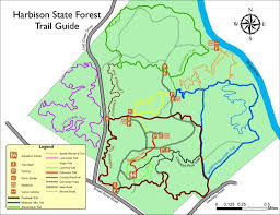 let u0027s hit the trails top 10 kid friendly hiking spots around