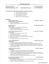 view basic resume sles sle resume for sales executive in telecom resume resume