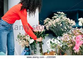 Arranging Roses In Vase Woman Arranging Display In Shop Window Stock Photo Royalty Free