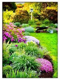608 best garden synergy landscape design images on pinterest