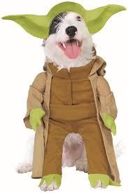 147 best pet costumes images on pinterest pet costumes costume