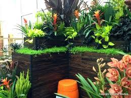 small tropical garden ideas make splash at 2013 northwest flower