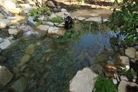 california streaming pond stars episode nat geo wild