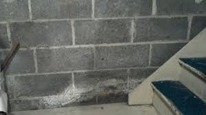 basement wall water decay issue do it yourself surftalk