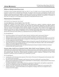 Resume For Analyst Position Ap English Argumentative Essay Topics The Kite Runner Guilt Essays